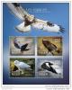 NIGER 2014 ** S/S 4v Birds Of Prey Raubvögel Greifvögel Rapaces A1451 - Adler & Greifvögel