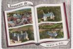 37 - SOUVENIR DE NEUVY LE ROI - Neuvy-le-Roi
