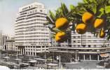 MARCO - CASABLANCA :  BANQUE NATIONALE POUR LE COMMERCE ET L'INDUSTRIE ( BNCI BNP PARIBAS ) Jolie CPSM Format  CPA - Casablanca