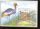 MINT NEVER HINGED SOUVENIR SHEET OF MUSHROOMS BIRD (  GAMBIA  1589 - Hongos
