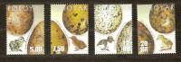 FarOer Féroé 2002 Yvertnr. 423-26 *** MNH Cote 18 Euro Faune Oiseaux Vogels Birds - Faroe Islands