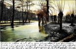 [DC4247] CARTOLINA - CAMPAGNE CON FIUME - TIMBRO RETRO FORSE VIU' - Viaggiata 1903 - Old Postcard - Cartoline