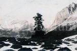 Postkaart / Post Card / Carte Postale / Montagnes Rocheuses / Colombie Britannique - Non Classés