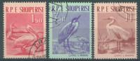 ALBANIE - 1961 - USED/OBLIT. - PELICAN CAPKE HERON AIGRETTE OISEAU VOGEL BIRD -   Yv 552-554 Mi 630-632 - Lot 12620 - Albanien