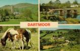 DARTMOOR   WIDECOMBE IN THE MOOE--POSTBRIDGE-DARTMEET         (NUOVA) - Clovelly
