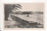 La Marsa La Plage - Tunisia