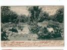 URUGUAY Montevideo Prado TARJETA POSTAL  Ca1900 POSTCARD Cpa Ak (W4_1667) - Uruguay