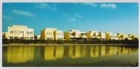 POSTCARD - THE MEADOWS, BUILDINGS DUBAI ** - Emirati Arabi Uniti