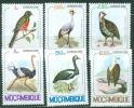 Mozambique 1980 Birds MNH** - Lot. 4052 - Mozambique
