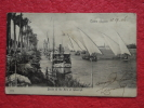 Egypt Egypte Le Caire Cairo Banks Of The Nile At Ghezireh 1906 - Kairo
