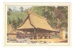 CPA INDONESIE ... KONINKLIJKE PAKETVAART MAATSCHAPPIJ Oost Flores Geestenhuis Peu Commune - Indonésie