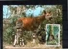 ZAIRE  Carte  Maxi  WWF  Panda   Okapi - Postzegels