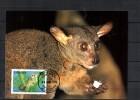 TANZANIE Carte  Maxi   WWF  Panda  Galago Zanzibaricus - Postzegels