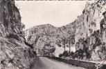 ALGERIE---GORGES DE PALESTRO---la Corniche--voir 2 Scans - Autres