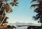Tahiti à L'aube - Vue Sur Moorea - Tahiti