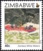 Zimbabwe - 2015 Victoria Falls 40c Rafting (**) - Rafting