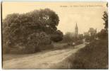Saint-Cast - Le Chêne Vert Et La Route Du Bourg - Sépia écrite Non Timbrée - 2 Scans - Saint-Cast-le-Guildo