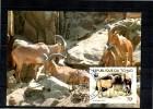 TCHAD   Carte  Maxi    WWF  Panda  Mouflon - Postzegels