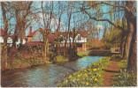 Shere. Sussex. Bridge Over The Tilling Bourn.Carte Petit Format Timbrée Peu Courante. 2 Scans. - Autres