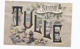 CPA 19 - TULLE - SOUVENIR DE TULLE - TB CP Fantaisie Et Multivue Avec Des Cartes Postales - Tulle