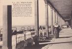 62 -- Pas De Calais -- Berck-Plage -- Hôpital Cazin-Perrochaud -- Galeries De Cure Marine -- Religieuse - Berck