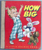 HOW BIG BY CORINNE MALVERN : SIMON AND SCHUSTER NEW YORK - Enfants