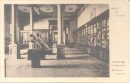 DEPARTAMENTO DE PALEONTOLOGIA MASTODONTES  MUSEO DE LA PLATA CPA CIRCA 1910 RARISIME TOP CARTE UNIQUE EN DELCAMPE - Museos