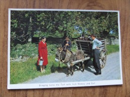 48974 POSTCARD: IRELAND: Bringing Home The Turf With Irish Donkey And Cart. - Other