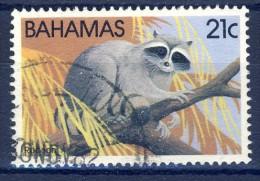 +Bahamas 1982. Fauna: Wash Bear. Michel 518. Used(o) - Bahamas (1973-...)