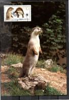 DDR   Carte Maxi   WWF  Panda  Loutre - Postzegels