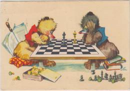 AK - Bären Beim Schach - 1961 - Schach