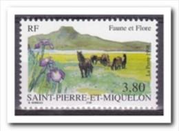 Saint-Pierre Et Miquelon 1998, Postfris MNH, Flowers, Horses - Ongebruikt
