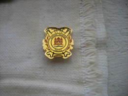 Pin´s Des Sapeurs Pompiers De La Commune De SELTZ (Dépt 67) - Firemen