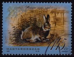 Lapin - Rabbit / 2008 Hungary / Used - Konijnen
