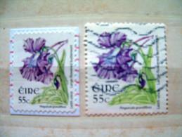 Ireland 2007 Flowers - #1709 + 1728 = 3 $ - Usati