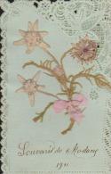 CPA:Fantaisie:Edelweiss Et Ruban Collés:Souvenir De Modane 1911 - Modane