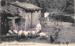 24 - EN PERIGORD -  Nos Campagnes - Petit Déjeuner En Famille - Porcs  Porcelets  Cochons - Poules - Angle Pli- 2 Scans - Otros Municipios