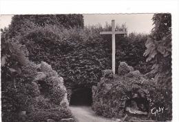 25135 Communauté De Rille - Fougères .- Le Calvaire Et L´entrée De La Charmille.76 Ed Gaby -croix