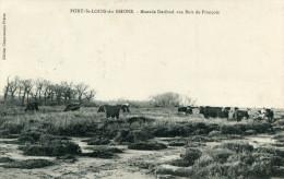 PORT SAINT LOUIS DU RHONE(BOUCHES DU RHONE) - France