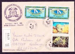 Nouvelle Calédonie - Lettre - Sonstige
