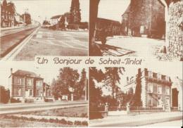 SOHEIT-TINLOT (4557) : Un Bonjour De Soheit-Tinlot. CPSM Multivues (4 Vues). - Tinlot