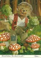 Mecki  Champignon Mushroon Pilze  Fungo  Amanita Muscaria - Mecki