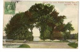S3602 -Natural Tree Arch, Wenham Pumping Station, Beverly - Etats-Unis