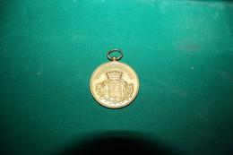 AUXONNE - COTE D'OR - FETE DEPARTEMENTALE DE GYMNASTIQUE - MINISTRE DE LA GUERRE - 1901 - Gymnastique