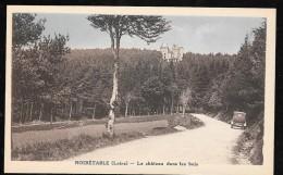 Noiretable ( Loire ) - Le Chateau Dans Les Bois   - Hai96 - Noiretable
