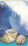 Oman - Babylonia Spirata, Sea Shells, 52OMNF, 2001, 250.000ex, Used - Oman