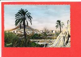 BOU SAADA Cpsm El Hamel Ville Sainte     64 Jomone - Andere Steden