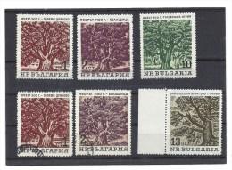 4 Timbres Neufs - BULGARIE - 1964 Old Trees - Arbres - Valeurs 1 Et 2 St Et 10 Et 13 St - Unused Stamps