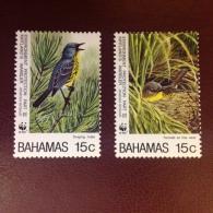 Bahamas Kirkland Warbler Birds MNH - Oiseaux