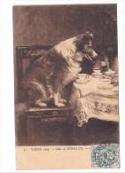 25177 Peintures Tableaux- Salon Paris 1907 -Mlle Sedillot -Chien Thé - 25 Ed ?